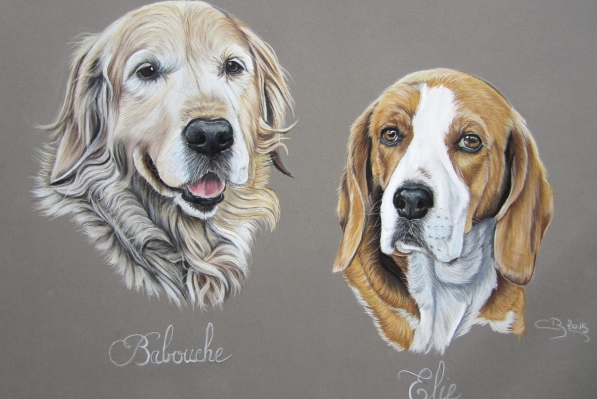golden-beagle