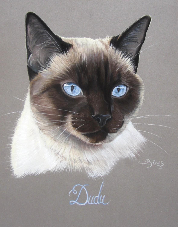 Portrait De Chat Siamois Pastels Secs