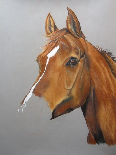 cheval alezan pastels
