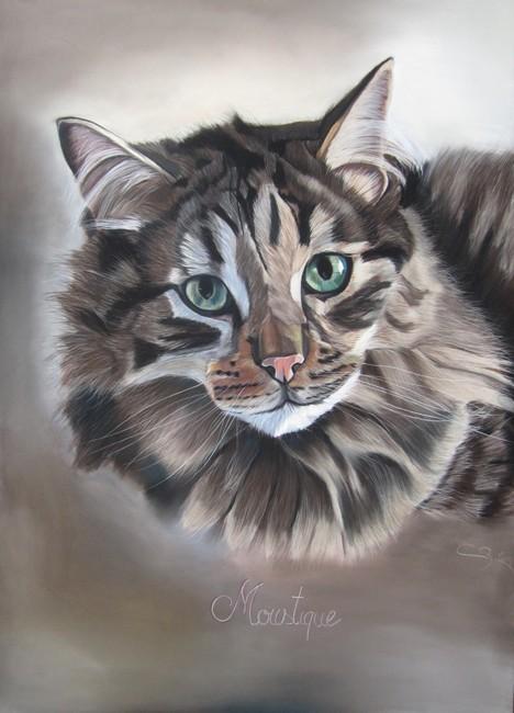 chat des forets norvégiennes portrait