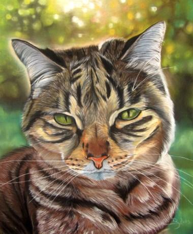 chat crépuscule pastel