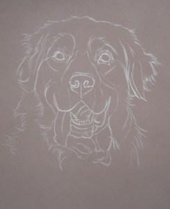 dessiner chien aux pastels