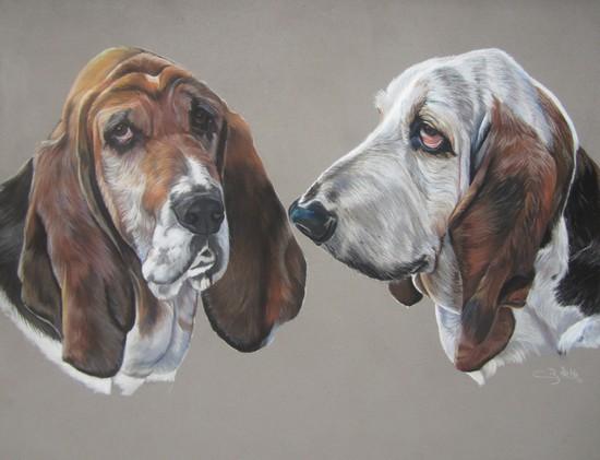 basset hound pastel