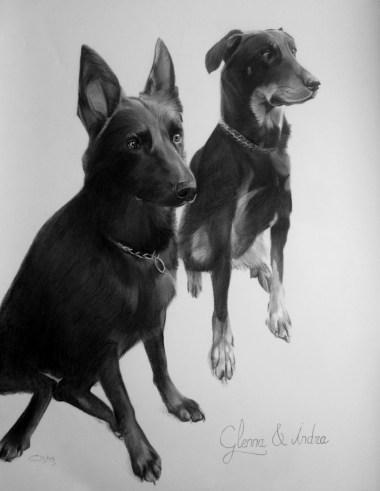 chiens au fusain