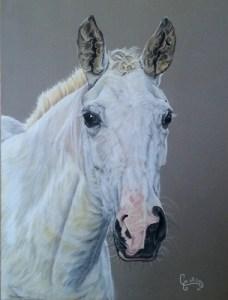 Le cheval de Claudine