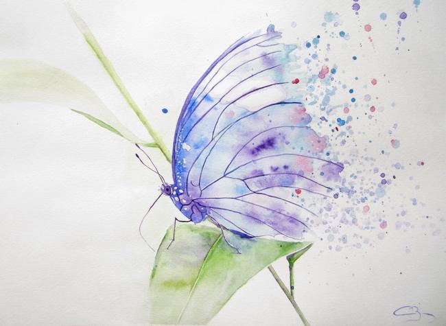 aquarelle papillon