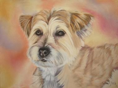chien-beige-au-pastel