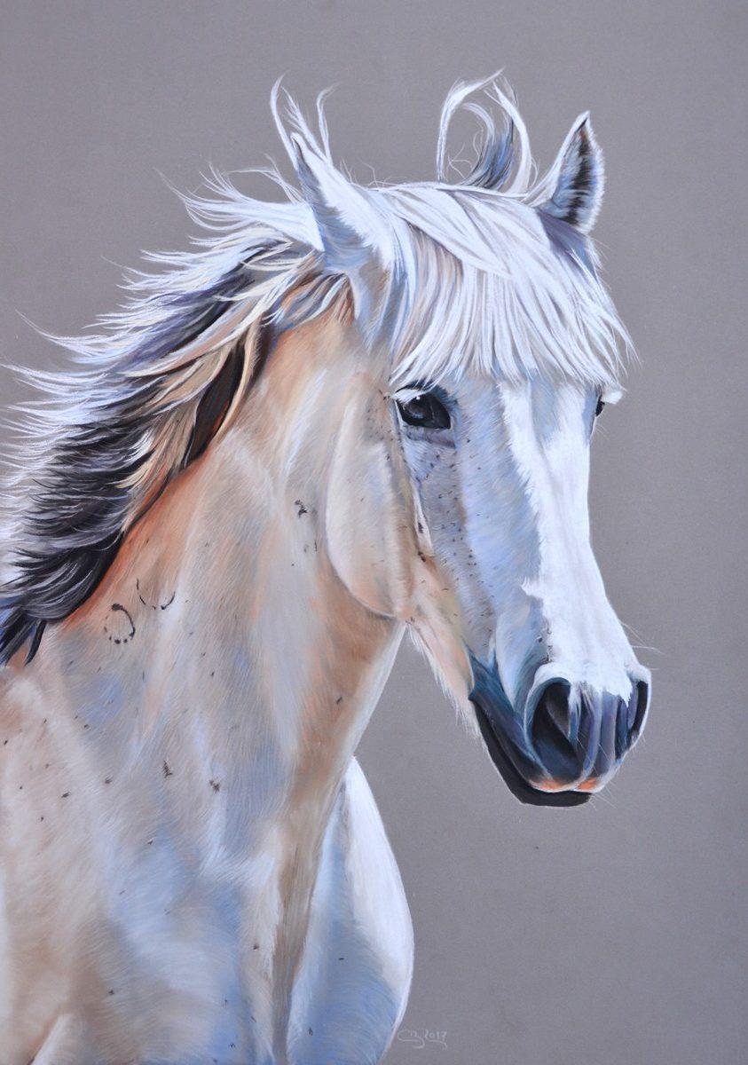 cheval gris pastel
