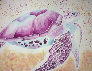tortue-ceia