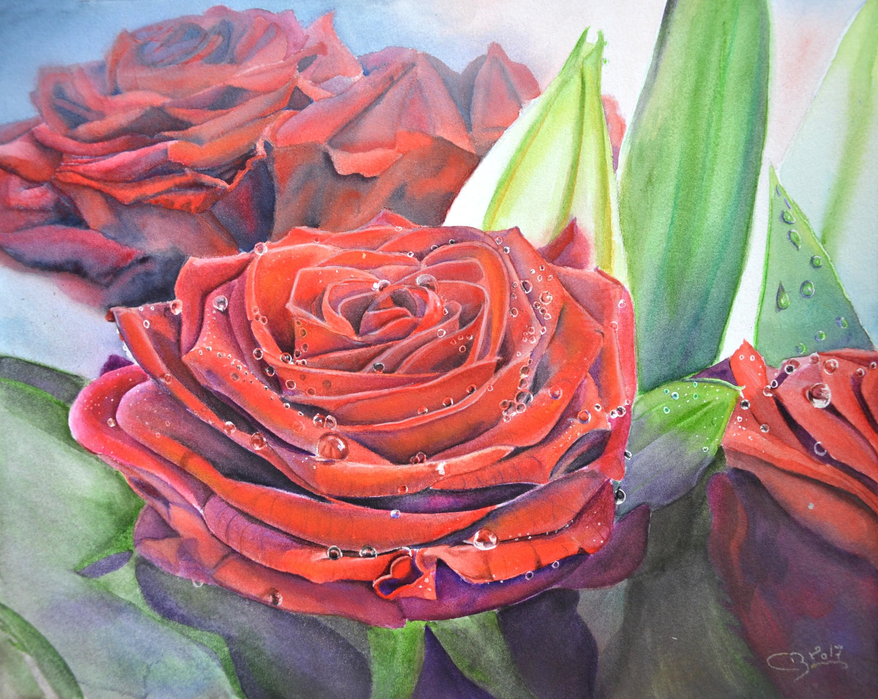 roses aquarelle