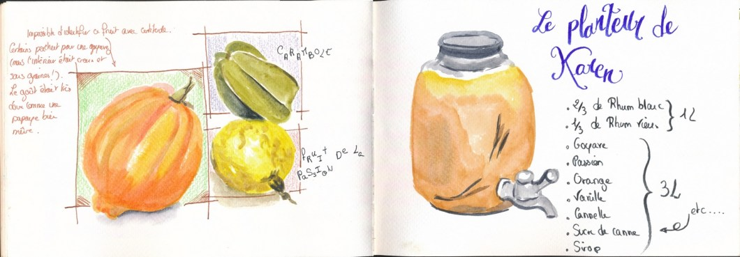 fruits croquis