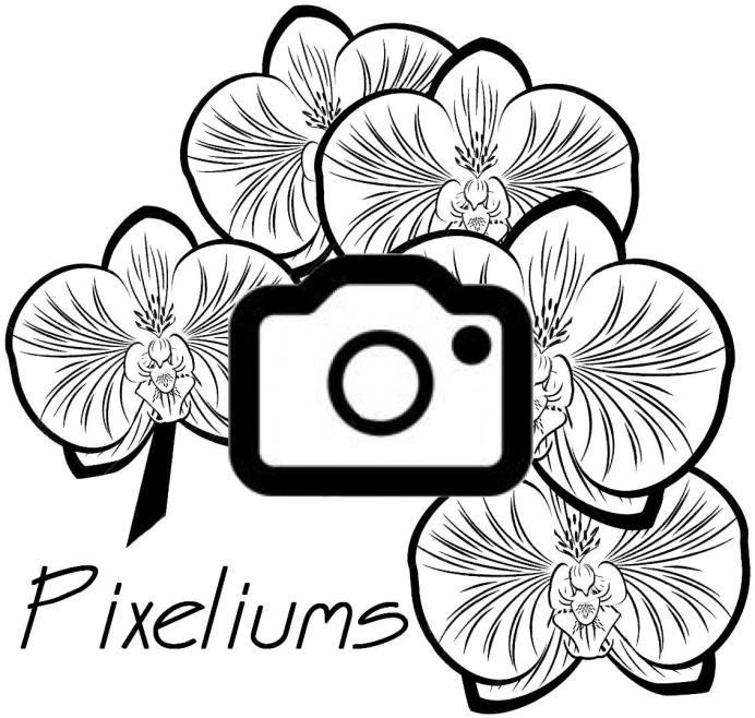 logopixeliums-1132×1078-1