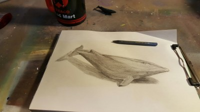 Image of a whale toob sketch and a whale toob