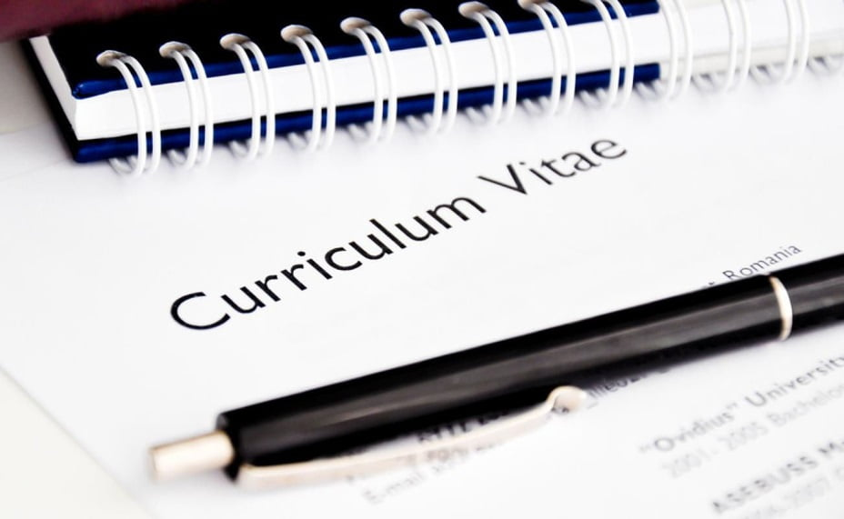Professional CV/RESUME Format For Job Application 36