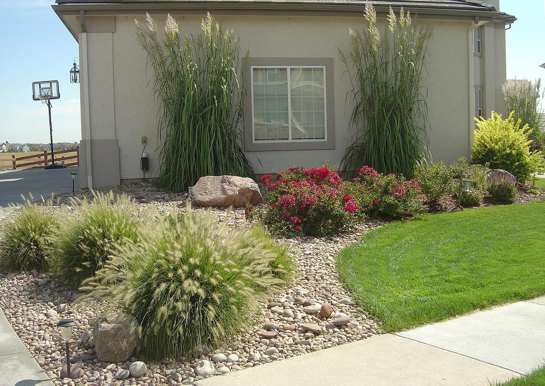 Xeriscaping, Planting, Plants, Design, Denver, Boulder ... on Xeriscape Backyard Designs  id=17445