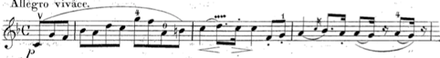 Squiggle of vibrato in Spohr Duo Op. 148