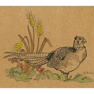 Pheasant on Ground 5″x 7