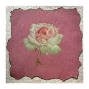 A Rose is a Rose 12″x 12″