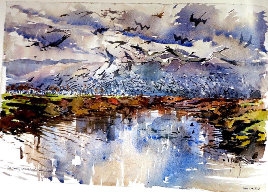Darren Woodhead - Morning Cranes