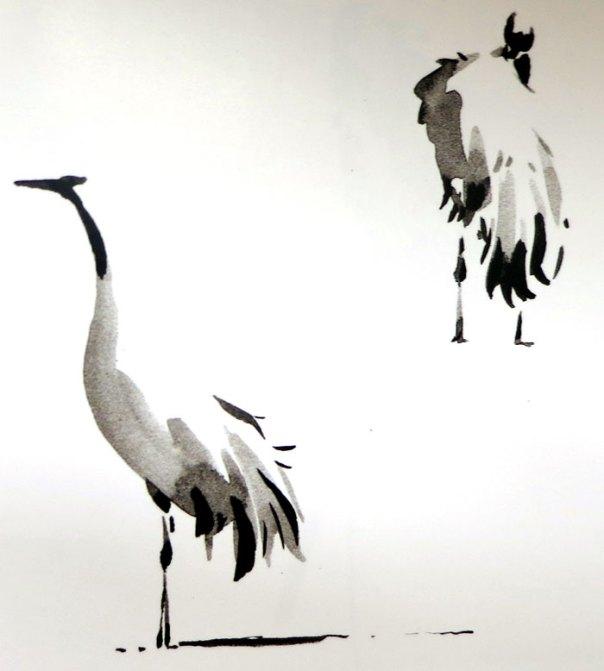 Erik van Ommen - Crane study