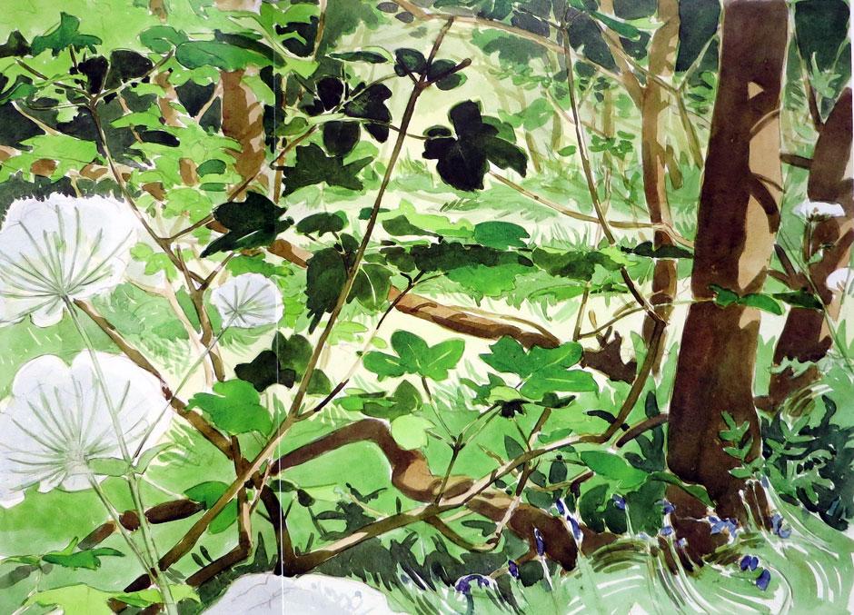 Andrew Haslen - Dixcart Valley
