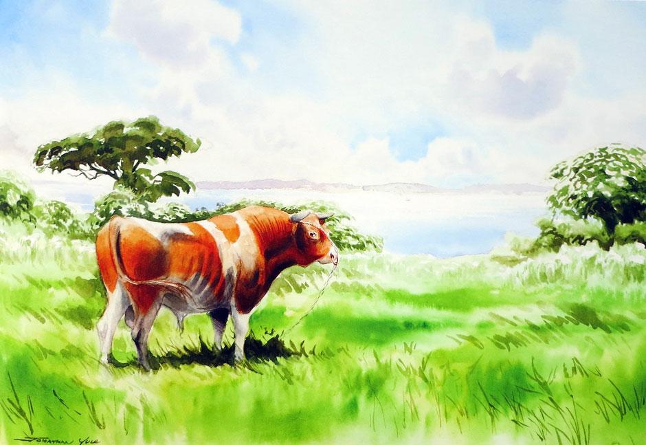 Jonathan Yule - Guernsey Bull
