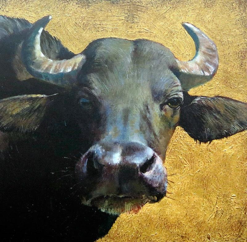 Robin Shillcock - Water Buffalo