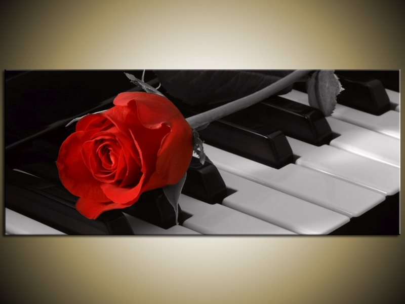 piano rode roos canvas