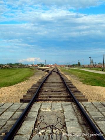 Auschwitz - Pologne