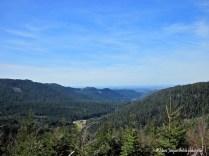 Le Parc naturel régional des Vosges