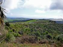 8-Cape Reinga