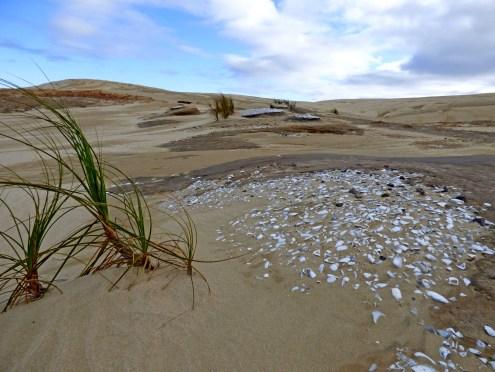 11-Sand dunes