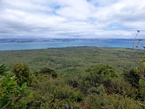 89-Rangitoto island