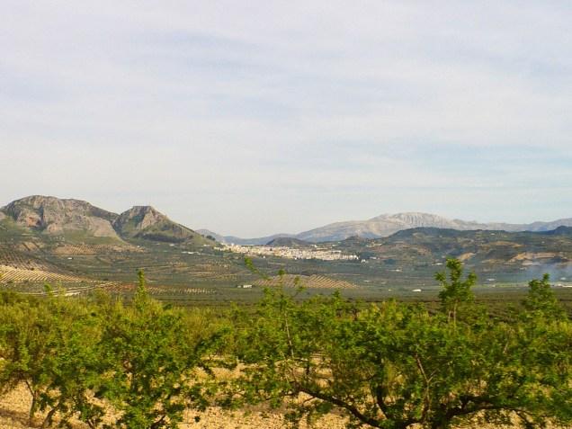 Paysages entre Gibraltar et Grenade