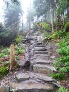 Sentiers pédestres