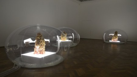 Unforgettable: Anicka Yi Kunsthalle Basel