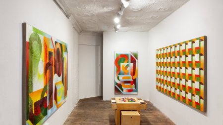 "Installation view of ""Mariah Dekkenga: Non-Zero"