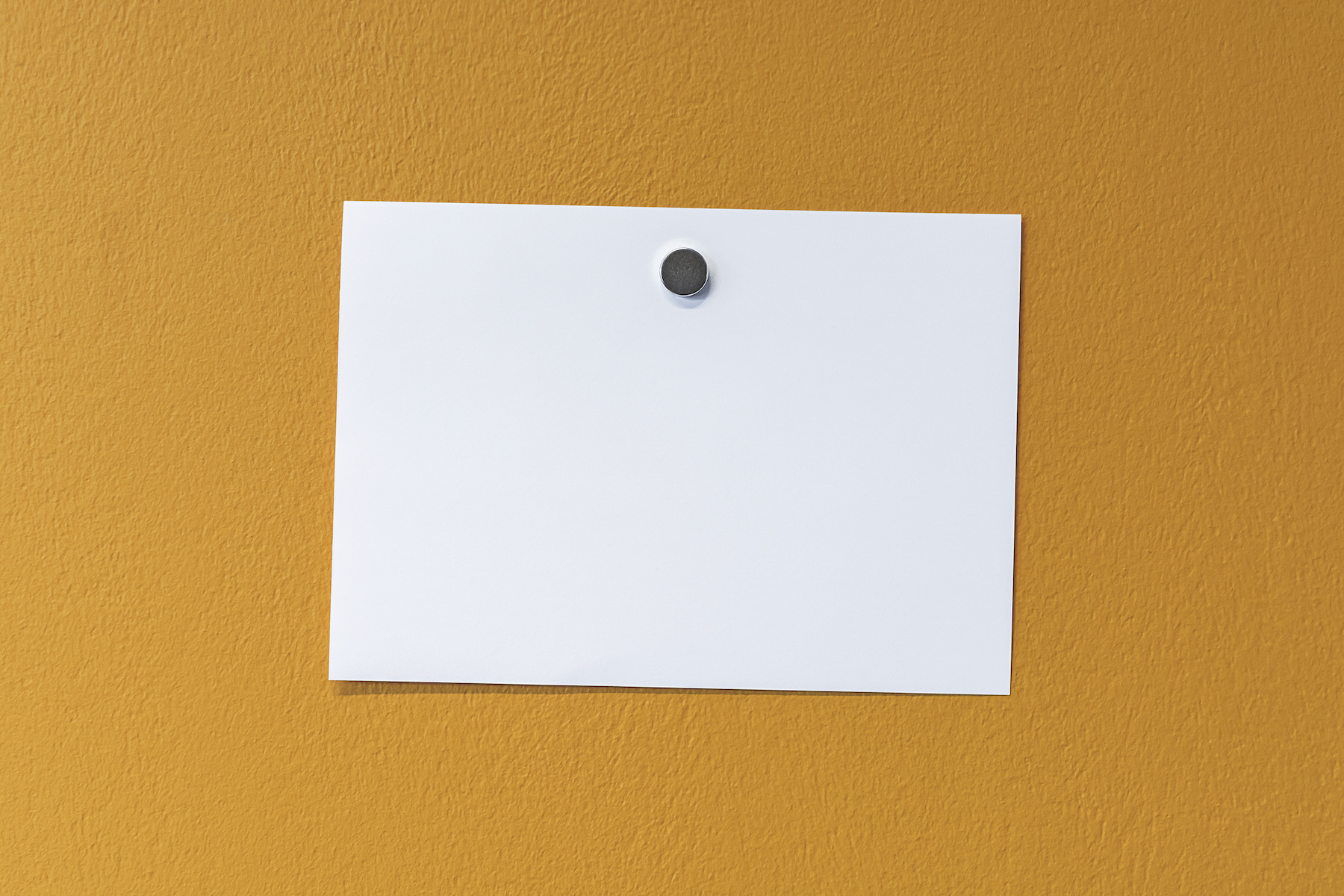 best magnetic poster and art hangers for displaying works artnews com