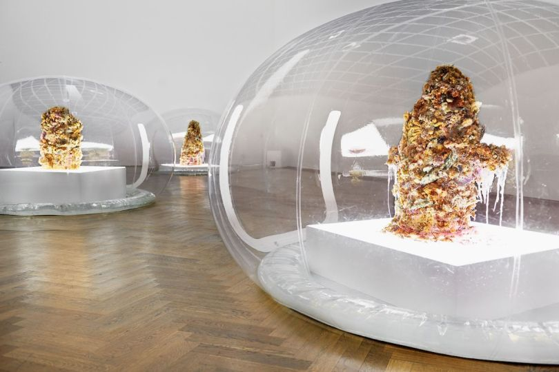 Three ovular clear structures with piles of tempura-fried flowers inside. They are exhibited inside a sleek room with the lights dimmed.