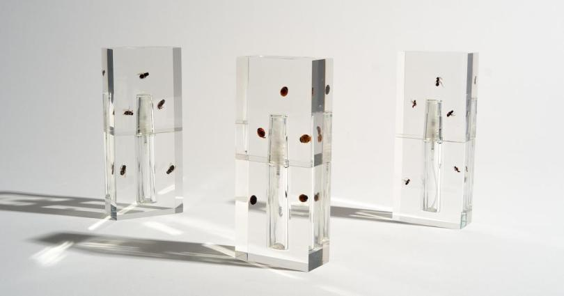 Three sleek glass perfume bottles with what appear to be creatures encased inside them.