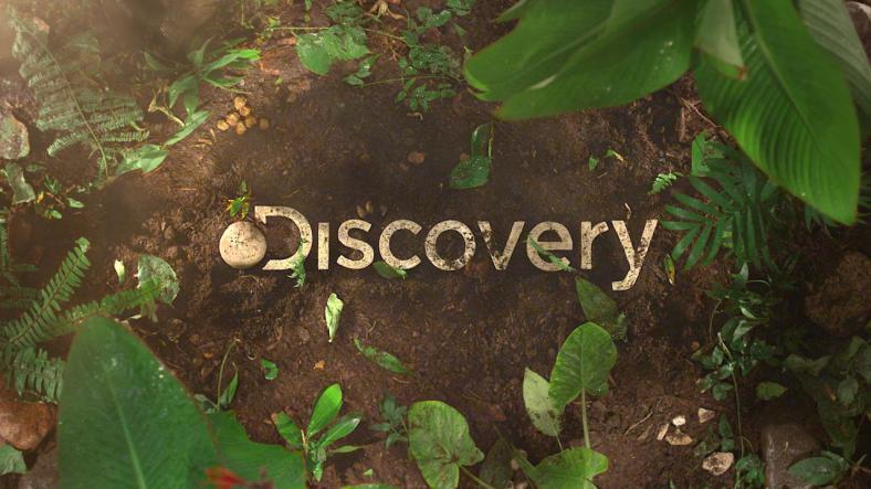 Discovery Latin America Logo