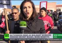 Walmart workers protest corporate greed and demand decent wages (Nov 2014)