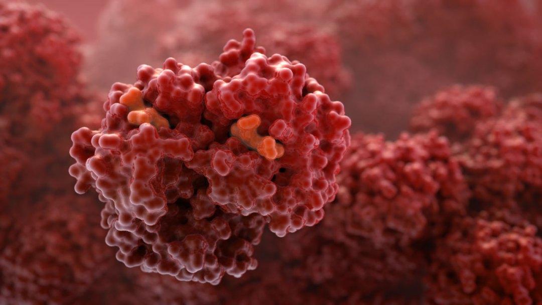 John-Liebler---Hemoglobin