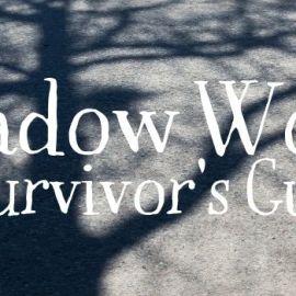 Shadow Work- A Survivor's Guide