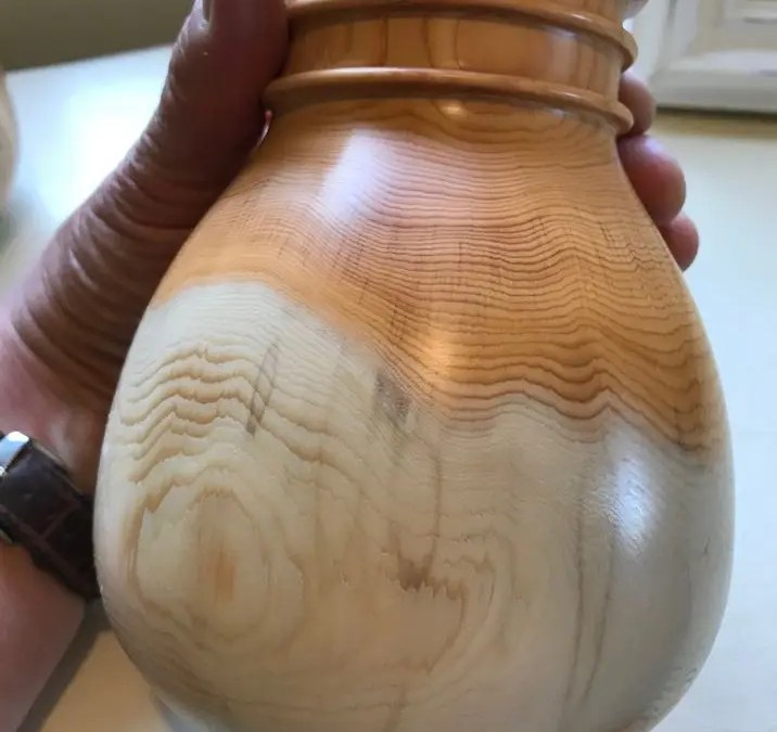 English Yew Jar