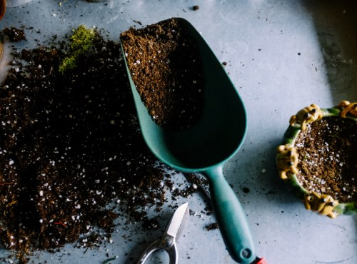 outils de jardin jardiniers conseils paysagsite