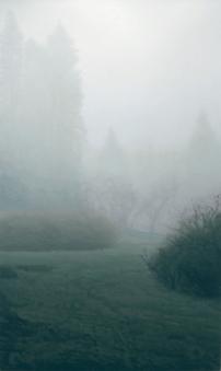 [Clin d'art #160] «Novembre». 2007. Guy Laramée. Huile sur toile. 152 x 89 cm. 34 $ par mois pour un particulier (taxes incluses). © L'Artothèque. Tous droits réservés.