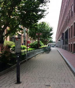 Pretty alley housing Grey's Fabrics