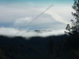 Misty scenery