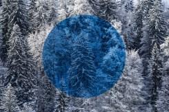 Série Snow, photographie de Gilles Pernet (2016-2017).
